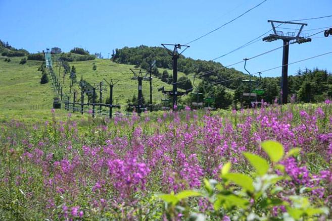 takaamagahara-rift.2jpg