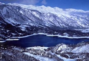 aoki-winter