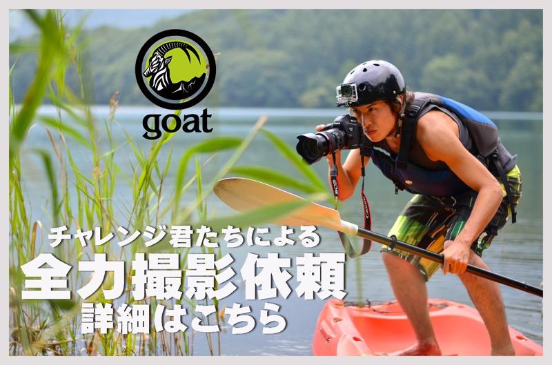 goat_撮影依頼