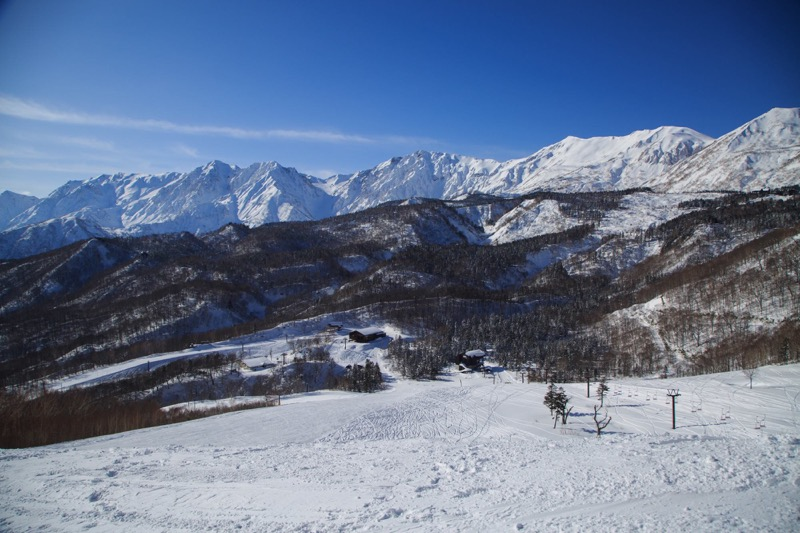 goat_栂池高原スキー場-長野アウトドア-nagano-outdoor6