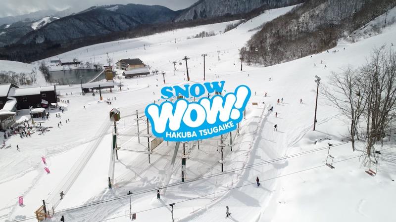 hakuba-snowow-goat